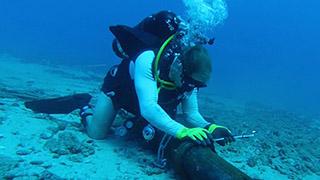 Cáp Liên Á chưa sửa xong, thời gian khôi phục tuyến AAG lại bị lùi