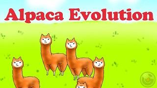 Alpaca Evolution – trải nghiệm nuôi lạc đà phong cách cực quái dị