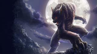 Những điều thú vị về người sói